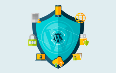 WORD PRESS WEBSITE PROTECTION